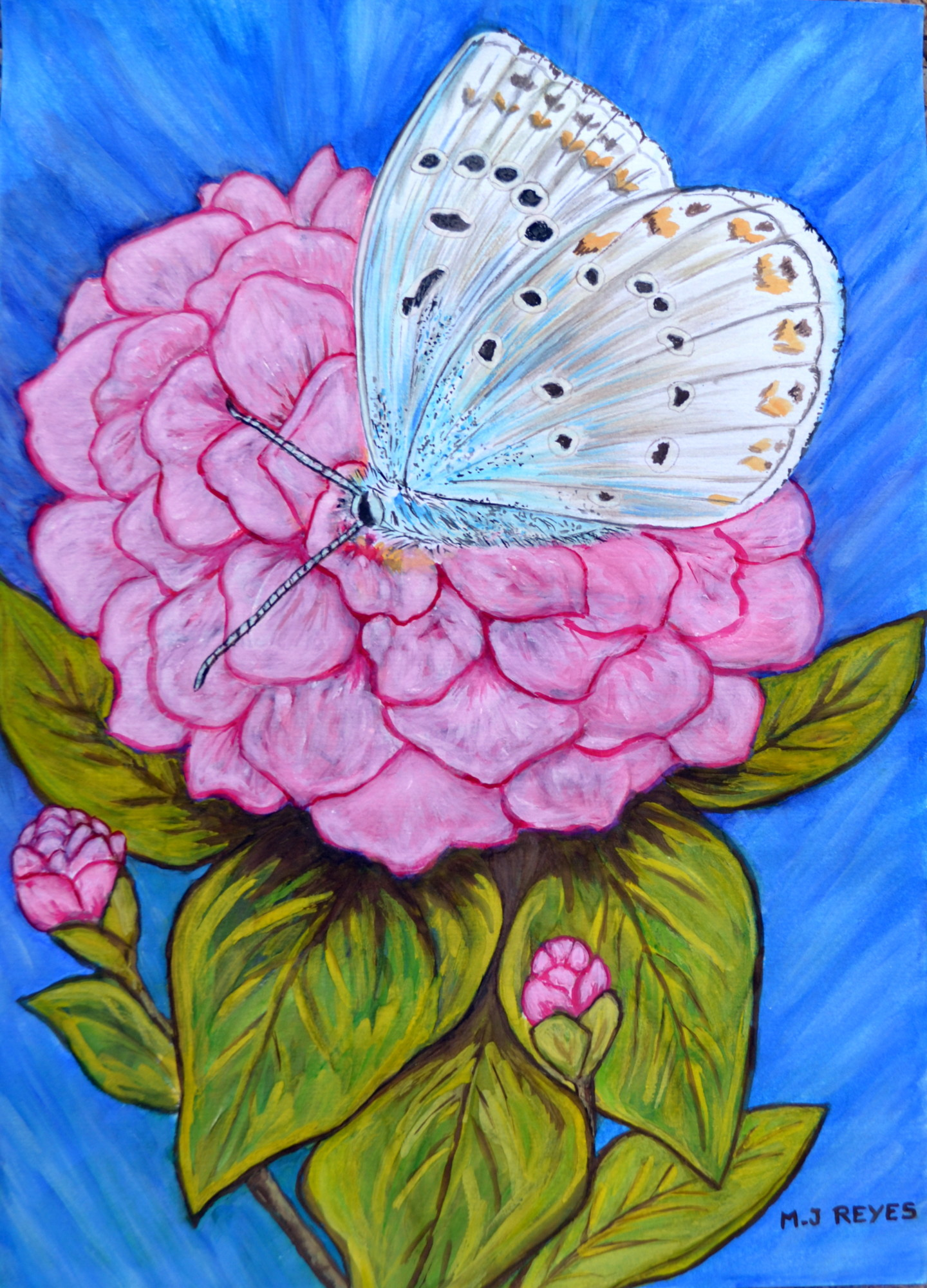 Marie-Josée Reyes - Camélia et papillon