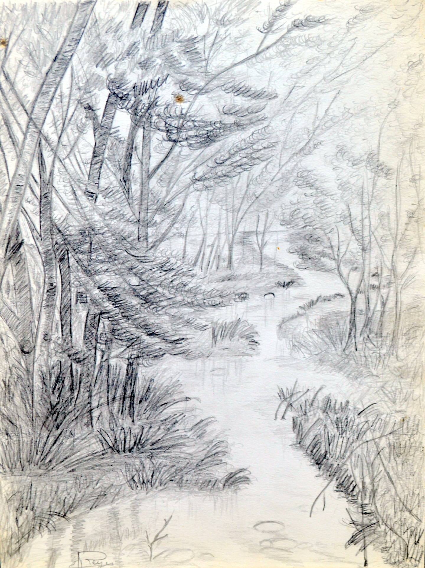 Marie-Josée Reyes - Rivière dans un sous-bois